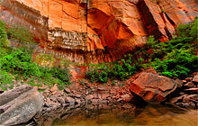 Upper Emerald Pool, Zion National Park - Virtual tour